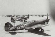 85th-FS-P-40s-possibly-at-Causeway-LG.-Tunisia.-Project-914-Archives-S.-Donacik-collection-